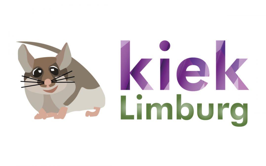 Platform Kiek Limburg intuïtiever